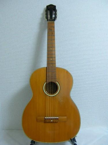 Dynamic Guitar No.20