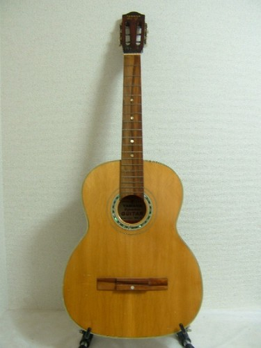 Dynamic Guitar No.4