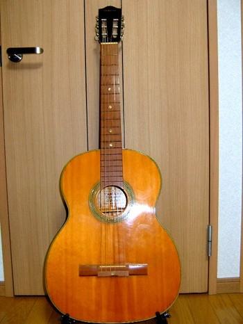 DYNAMIC GUITAR S50